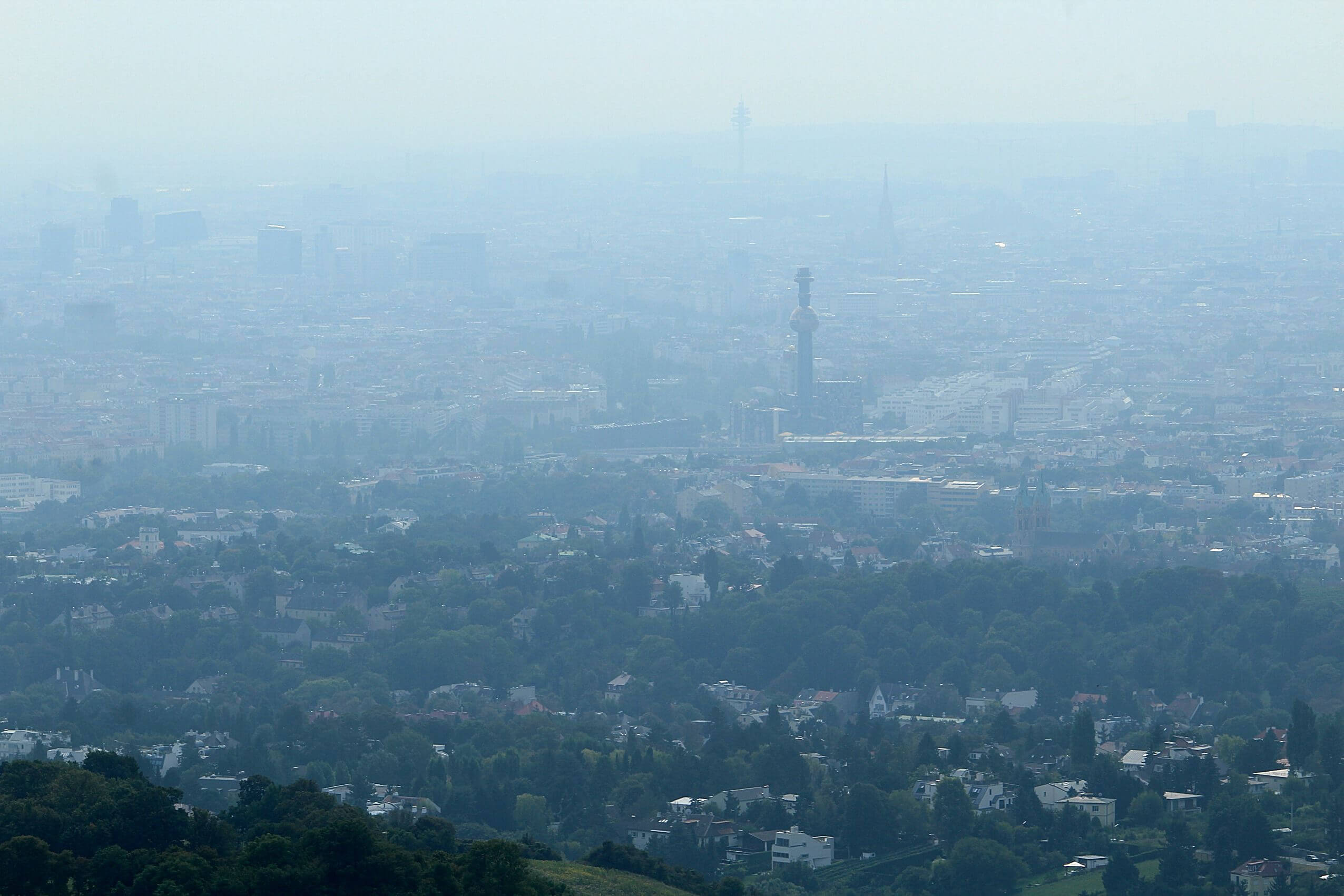 Wien im Smog. By Dguendel - Own work, CC BY 4.0, https://commons.wikimedia.org/w/index.php?curid=53720485